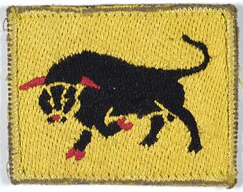 INS_005119 IWM Black Bull
